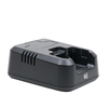 TTi-H100-Charger
