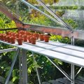 Kweekschap voor tuinkas Royal well