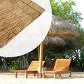 Riet / Stro dak 70 x 200 cm Stroken op bamboestok gevlochten - Bundel per 5 stuks
