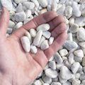 Carrara Grind Wit 16 - 25 mm