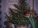 Kerstboommantels