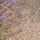 Graniet Split Rood 8 - 16 mm 25