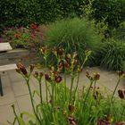 Tuin tegels met facet 40x60x4cm Excluton