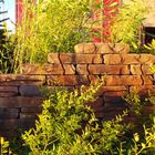 Stone Walling Naturel 18 x 42 x 8 cm