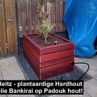 Beitz Bankirai hardhoutolie