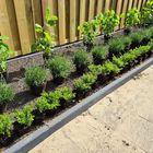 Mooi Borderpakket hortensia lavendel ilex