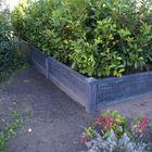 Afdekpet afdekkap betonnen tuinhek
