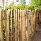 Tuinhek Engels Kastanjehout Op Rol 460 cm in 4 hoogtes van 90 - 180 cm