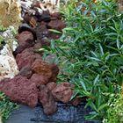Rood Lava breuksteen 10 - 20 cm