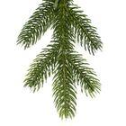 PE dennentak Natuurgetrouwe kunstkerstboom Wassenaar