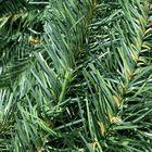 PVC tak Natuurgetrouwe kunstkerstboom Wassenaar
