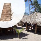 Palmbladeren dak 70 x 200 cm Stroken op bamboestok gevlochten - Bundel 10 stuks