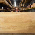 houten plaat lariks 18 mm noestvrij en rechtkantig zonder tong en groef