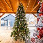 Grote kerstboom amsterdam 5 meter