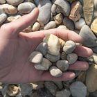 Morane Grind Grijs Geel Wit 16 - 32 mm 25 Kilo