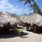 palmdak palmbladeren dakbedekking