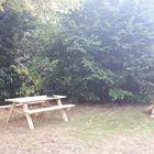 Picknickbank vurenhout in de tuin