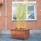 hardhouten plantenbak op maat van ipe hout - maatwerk bloembak