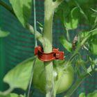 Royal Well Planten Clips voor tuinkas - set 20 stuks