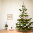 Echte nordman kerstboom 2 meter - 225 cm