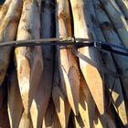 kastanjepalen 100-120 mm ontschorst en gepunt