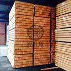 pfahl-larche-douglasie-90-x-90-x-3000-mm-gesagt-aktionspreis
