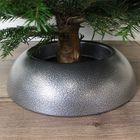 echte nordmann kerstboom met easy fix
