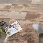 Terrastegel GeoColor Plus Sepia Brown