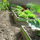 slakken-uit-tuin-oplossing