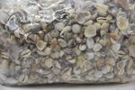 Shell mix small 1kg