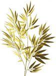 Bamboo spray gold 98cm
