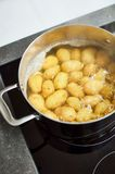 MasterChef Tri-Ply Casserole Pan 20 cm Potatoes
