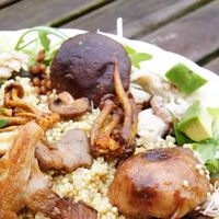 Quinoa salade met makreel, paddenstoelen en avocado