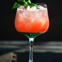 Mocktail tonic grapefruit
