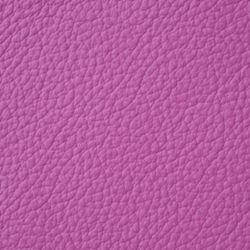 apollo bright purple