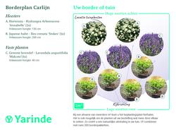 Beplantingsplan Carlijn