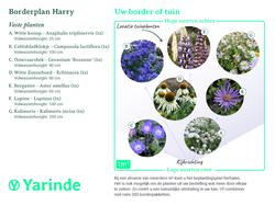 borderpakket harry beplantingsplan