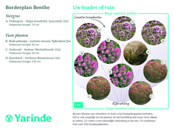 Beplantingsplan Benthe