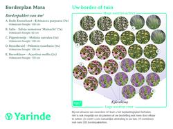 Beplantingsplan Mara