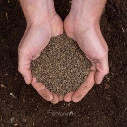 koemest korrels vaste planten voeding planten