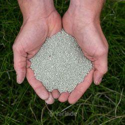 verbeteren van zandgrond hulp bij tuinieren zandgrond