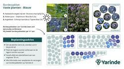 Beplantingsplan blauw zon