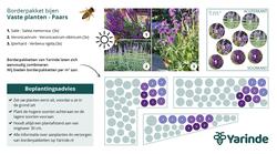 Beplantingsplan paars Bijvriendelijke tuinplanten