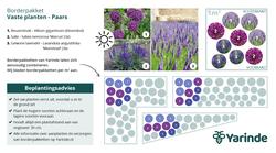 Beplantingsplan paars zon