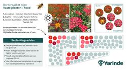 Beplantingsplan rood bijvriendelijke tuin