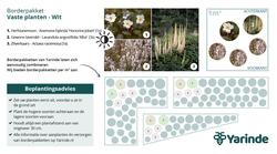 Beplantingsplan wit halfschaduw