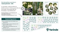 Beplantingsplan wit prairietuin