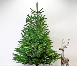 Houten Kerstboom Standaard 78 Cm Voet Kerstbomen