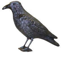 SuperCat Vogelverdrijver Raaf