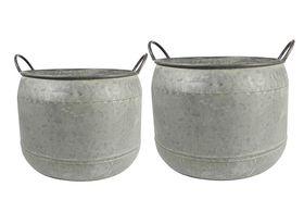 TS Pot set van 2 Mason thyme